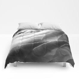 Rose Comforters
