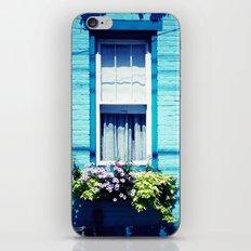 Blue Window iPhone & iPod Skin
