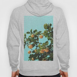 Summer Orange Tree Hoody