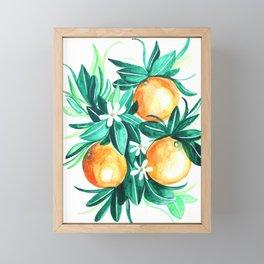 Orange flower watercolor Framed Mini Art Print