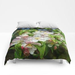 crab apple  Comforters