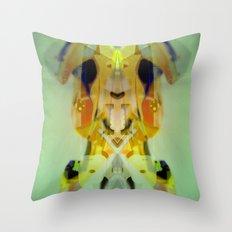2011-10-21 12_32_17 Throw Pillow