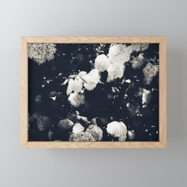 High Contrast Black and White Snowballs II Framed Mini Art Print