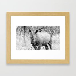 Black Rhine Black and White Framed Art Print