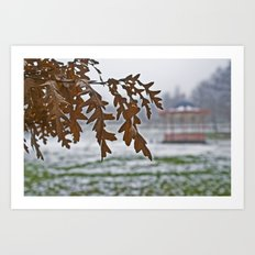 The Arboretum  Art Print