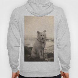 Dog on Nansen's Fram Expedition to the Arctic Hoody