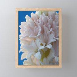 Hyacinth blush Framed Mini Art Print