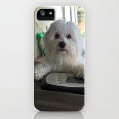 Annie iPhone (5, 5s) Slim Case