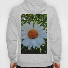 Single White Daisy Hoody