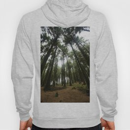 Forest of Bowland Hoody