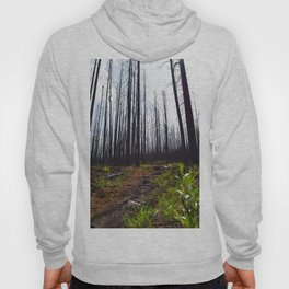 Excelsior Wildfire in the Maligne Valley, Jasper National Park, CA Hoody