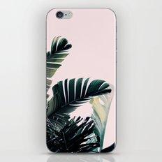 Paradise #2 iPhone & iPod Skin