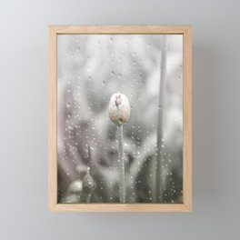AFE Allium Framed Mini Art Print