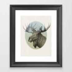 Moose head elk Framed Art Print