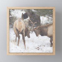 Watercolor Elk Bull 56 Framed Mini Art Print