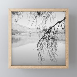 Magic Trees. Foggy sunrise. At The Lake. Framed Mini Art Print