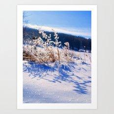 Frozen Wonderland Art Print