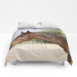 Gulliver Comforters