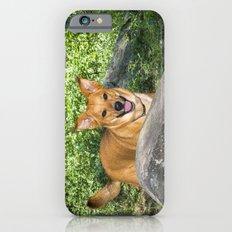 My Duke iPhone 6s Slim Case