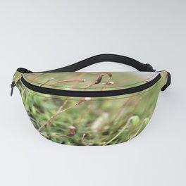 Mossy Fanny Pack