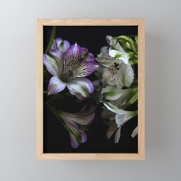 Floral bouquet. Purple and white flowers. Framed Mini Art Print