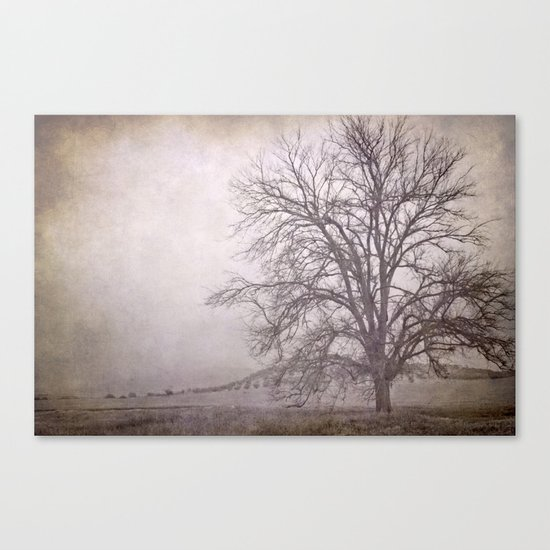 The big tree under the storm Canvas Print
