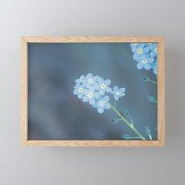 forget-me-nots Framed Mini Art Print