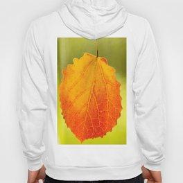 Orange Leaf Vivid Green Background #decor #society6 #buyart Hoody