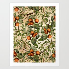 Vintage Fruit Pattern Art Print