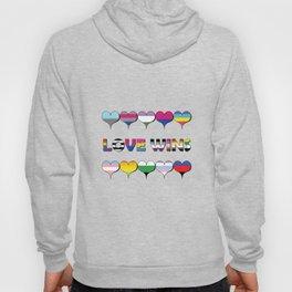 Love Wins Hoody
