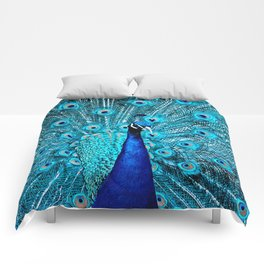 Peacock  Blue 11 Comforters