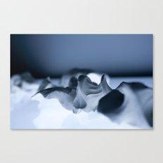 Examine Canvas Print