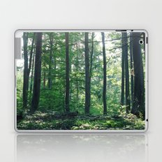into the woods 12 Laptop & iPad Skin