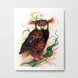 Sunset owl Metal Print