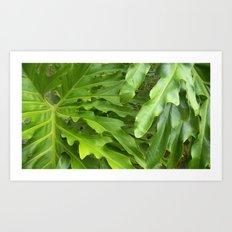 Just greens Art Print