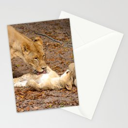 Bath Time for Lion Stationery Cards