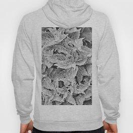 coleus black and white Hoody