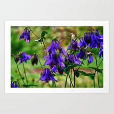 Purple Petals in the Rain Art Print