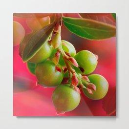 Green Berries Red Background #decor #society6 #buyart Metal Print