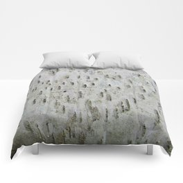 Birch Bark on a Fallen Tree Comforters