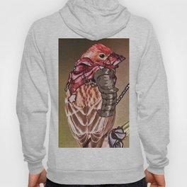 Birds In Armor 2 Hoody