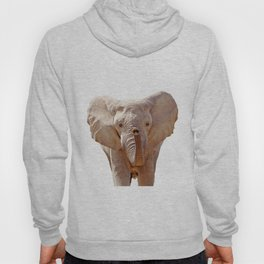 Elephant Art Hoody