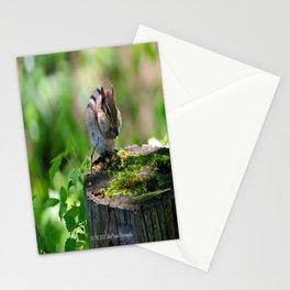 Silent Stuffer Stationery Cards