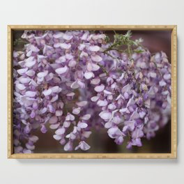 Spring - Wisteria Serving Tray