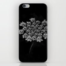 Lace iPhone & iPod Skin