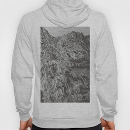 COLD CLIFF Hoody