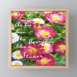 God's Promise Framed Mini Art Print