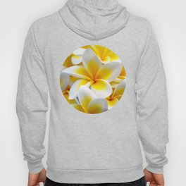 Frangipani halo of flowers Hoody