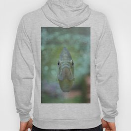 Happy Fish Hoody