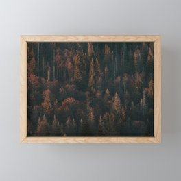 Autumn Trees - Landscape and Nature Photography Framed Mini Art Print